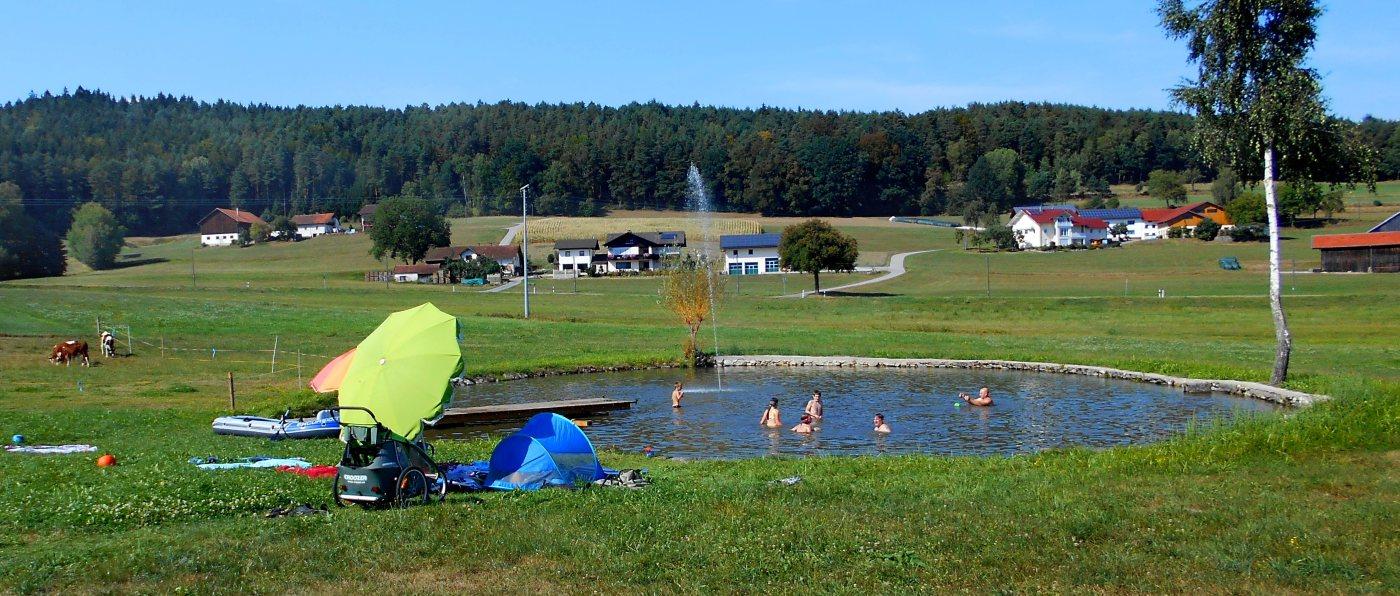 ammerhof-bayerischer-wald-urlaub-badeteich-wasser-schwimmen