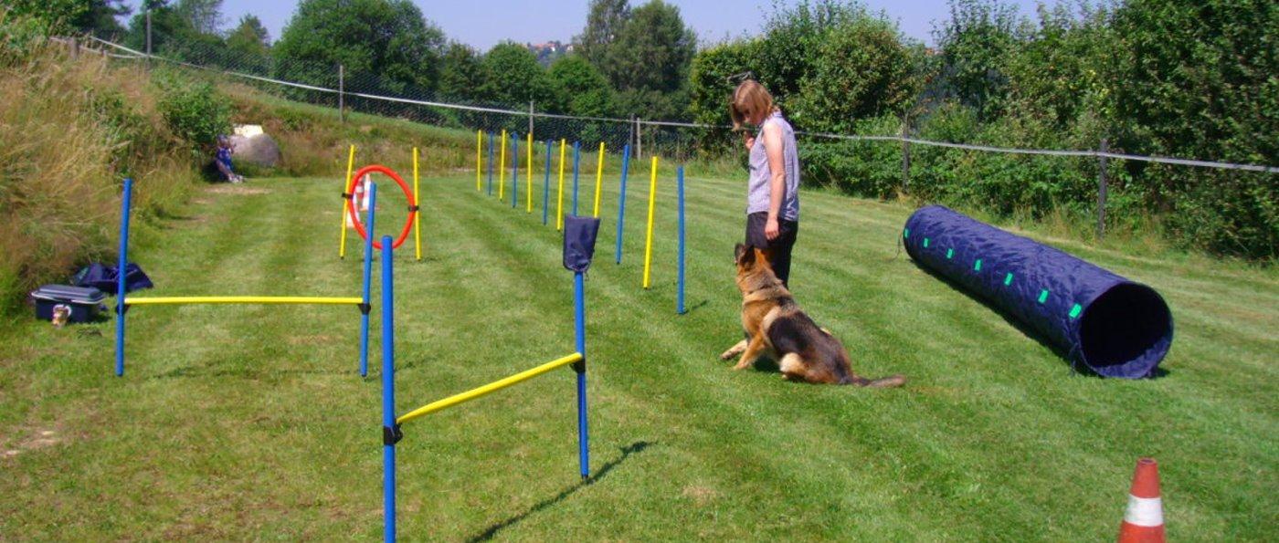 Bayern Ferienhaus mit Hundeplatz eingezäunter Garten