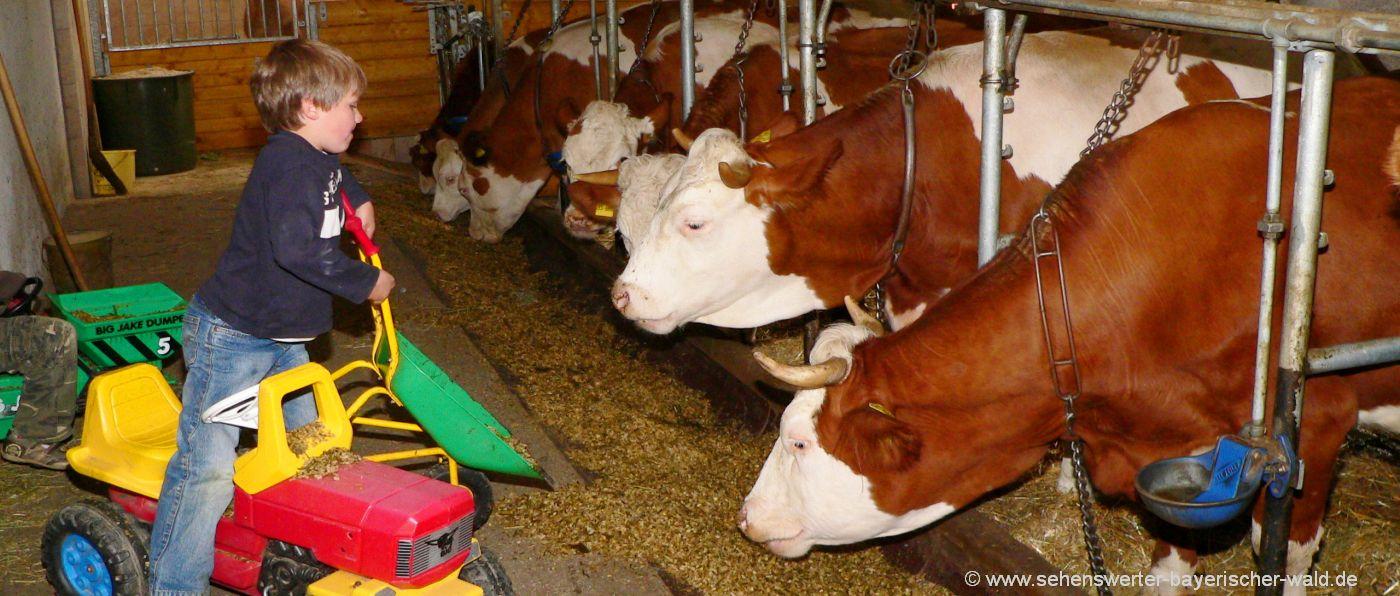 Bauernhofurlaub in Niederbayern Familien & Kinder Bauernhöfe