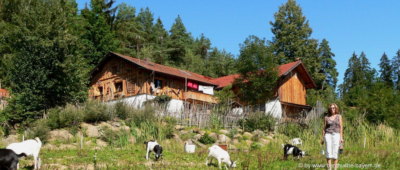 berghütten-bayerischer-wald-mieten-ferienhütten-aussen