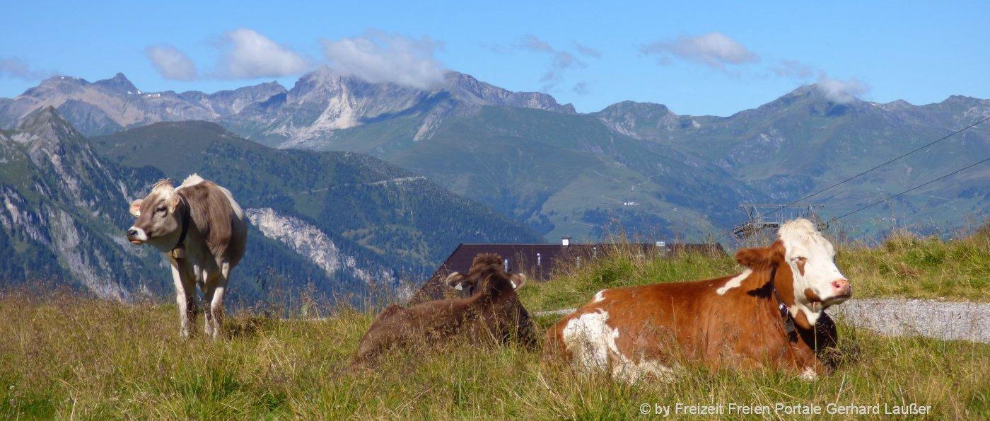 Hüttenurlaub in Bayern Hütten in den Bergen mieten