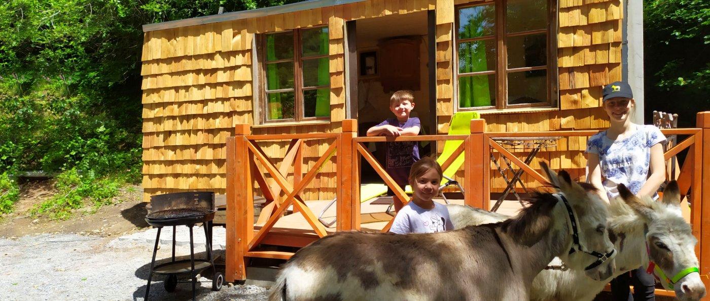 eselhof-waldhütten-bayern-tinyhaus-eseltouren-ansicht