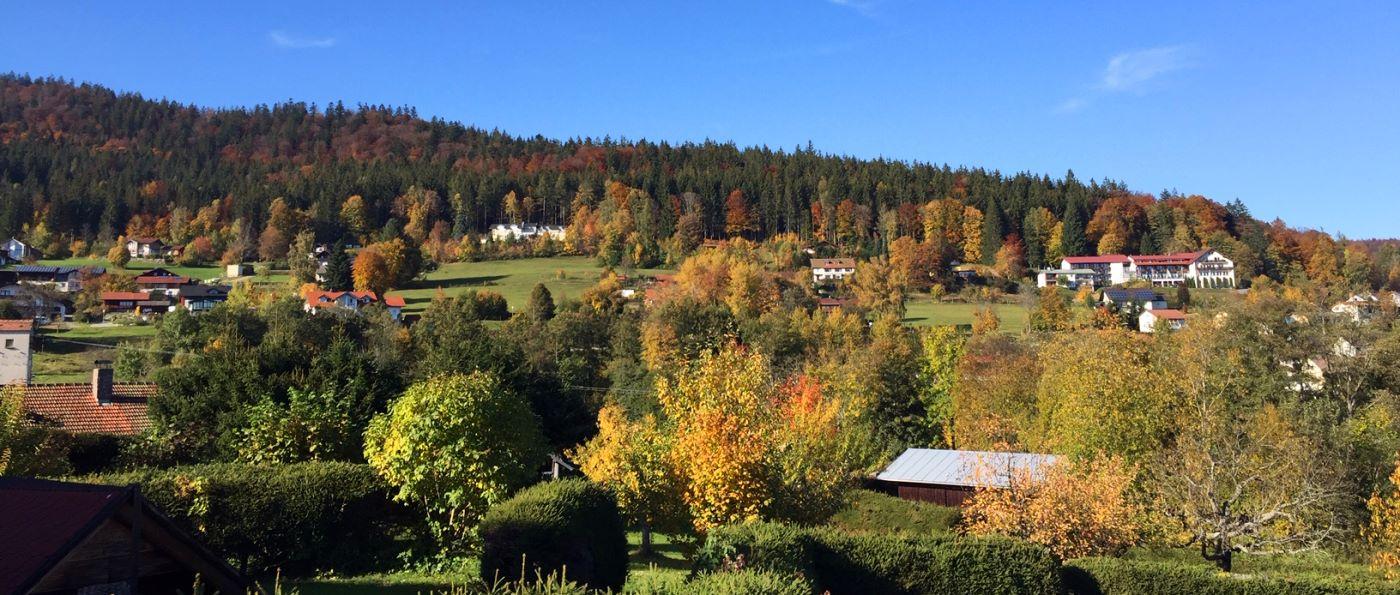 fisch-luxus-chalets-zwiesel-ferienhaus-nationalpark-aussicht
