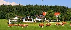 gruppenhaus-niederbayern-wellness-ferienbauernhof.jpg