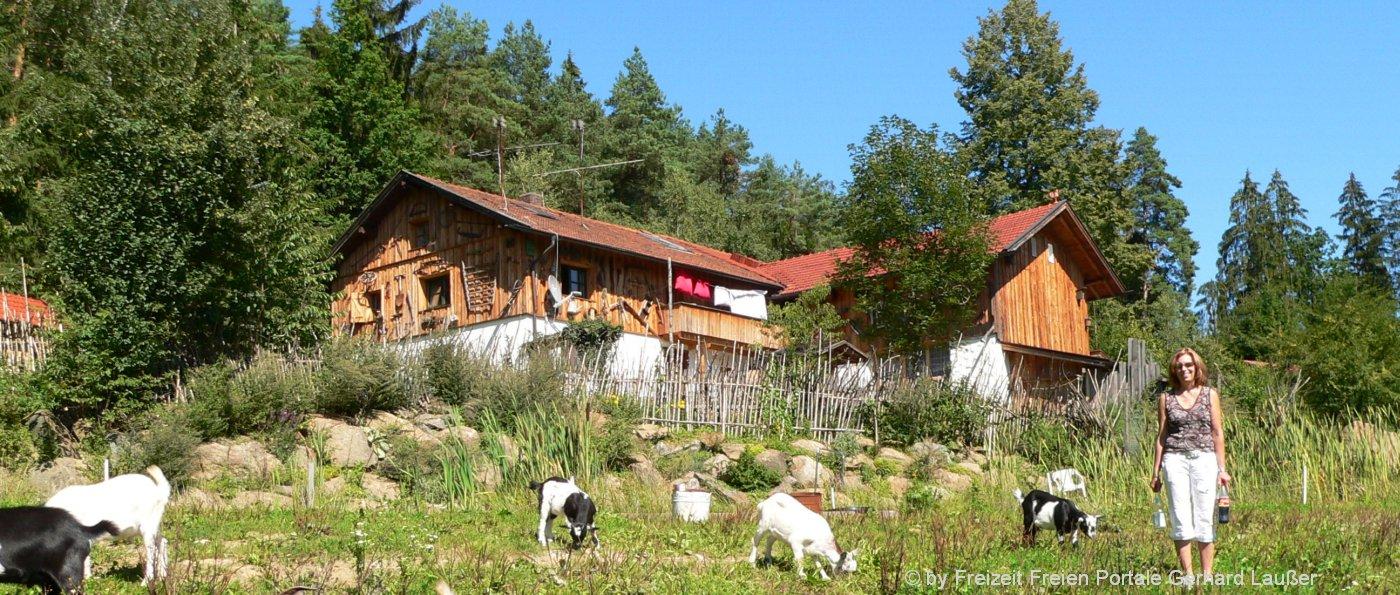 Bayerischer Wald Urlaub Almhütte mieten Selbstversorgerhaus in Bayern