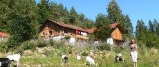 selbstversorgerhaus-bayerischer-wald-gruppenunterkunft-ansicht