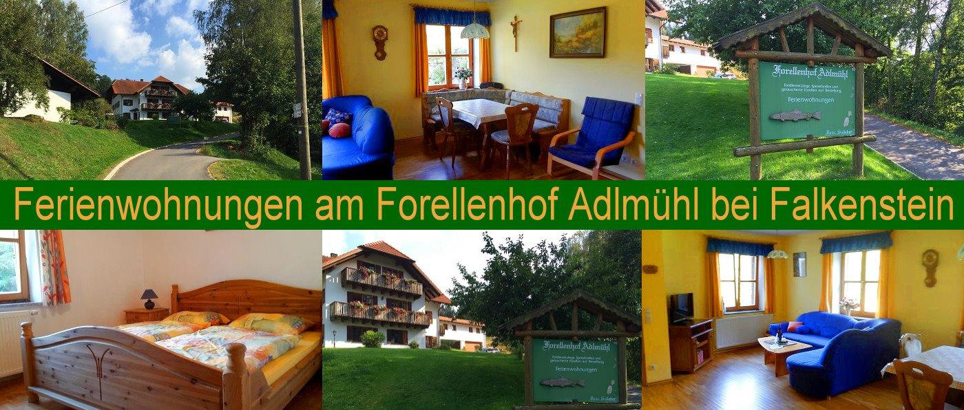 solleder-ferienwohnungen-falkenstein-angeln-oberpfalz