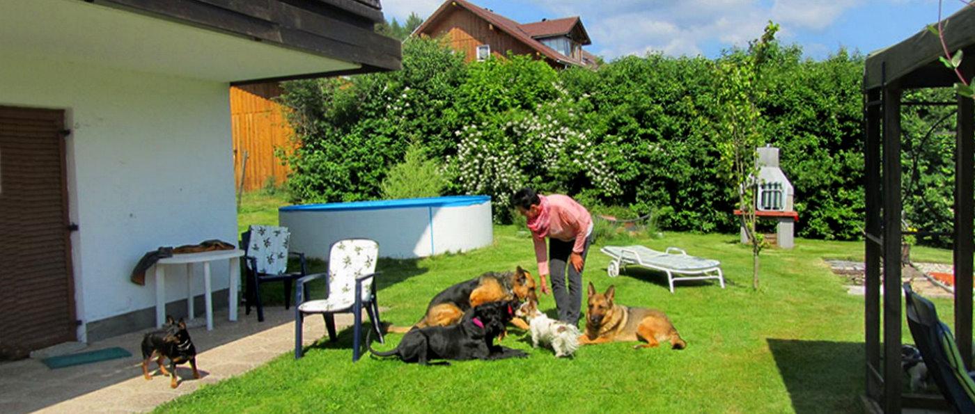 sonnleitn-niederbayern-hundefreundliche-pension-garten-anlage